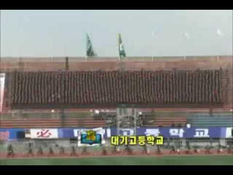 Невероятное шоу азиатских футбольных болельщиков